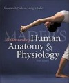 Maders Understanding Human Anatomy & Physiology